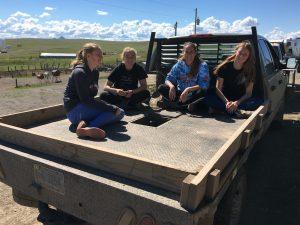 Wyoming, vegan und zuckerfrei