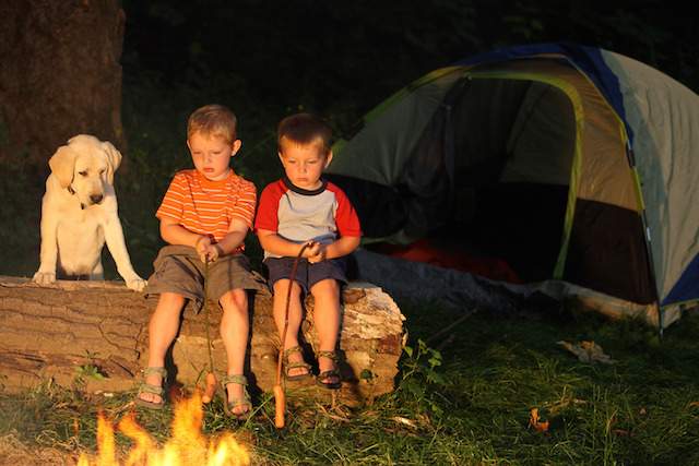 Camping Kochbuch Outdoorküche : Outdoor küche zuckerfreie familienküche: gesunde vollwertige